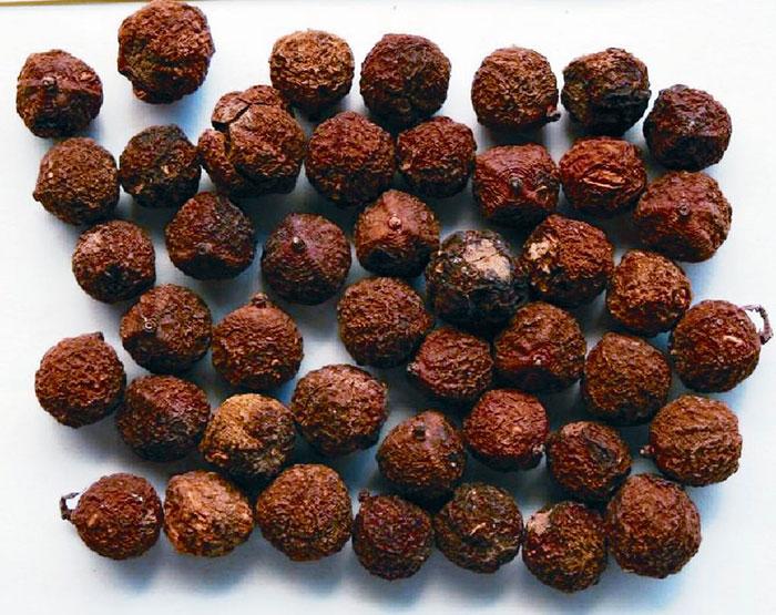 Сушёные ягоды амалаки