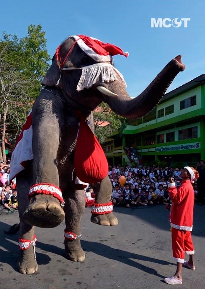 Рождество в Тайланде