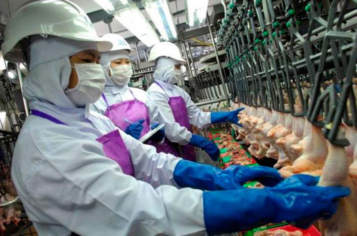 Чароен Пакпандс Фудс (CPF) подтверждает свою приверженность трудящимся-мигрантам из Камбоджи и Мьянмы, предоставляя им справедливую оплату труда и практику для всех иностранных сотрудников компании.