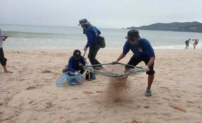 Центр развития прибрежных ресурсов Андаманского района исследует пляж Патонг на Пхукете. Фото Центра исследований